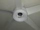 Ceiling Fan Blades
