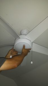 Ceiling Fan Light Cover